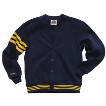 CAR 002 - Navy/Gold